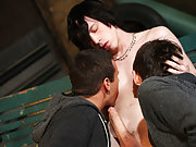 Gay wrestling groups and super gay porn group sex xxx - Gay Twinks Vampires Saga!