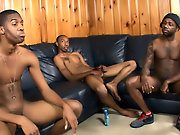 Blackmailed male slaves and black male strippers blowjobs